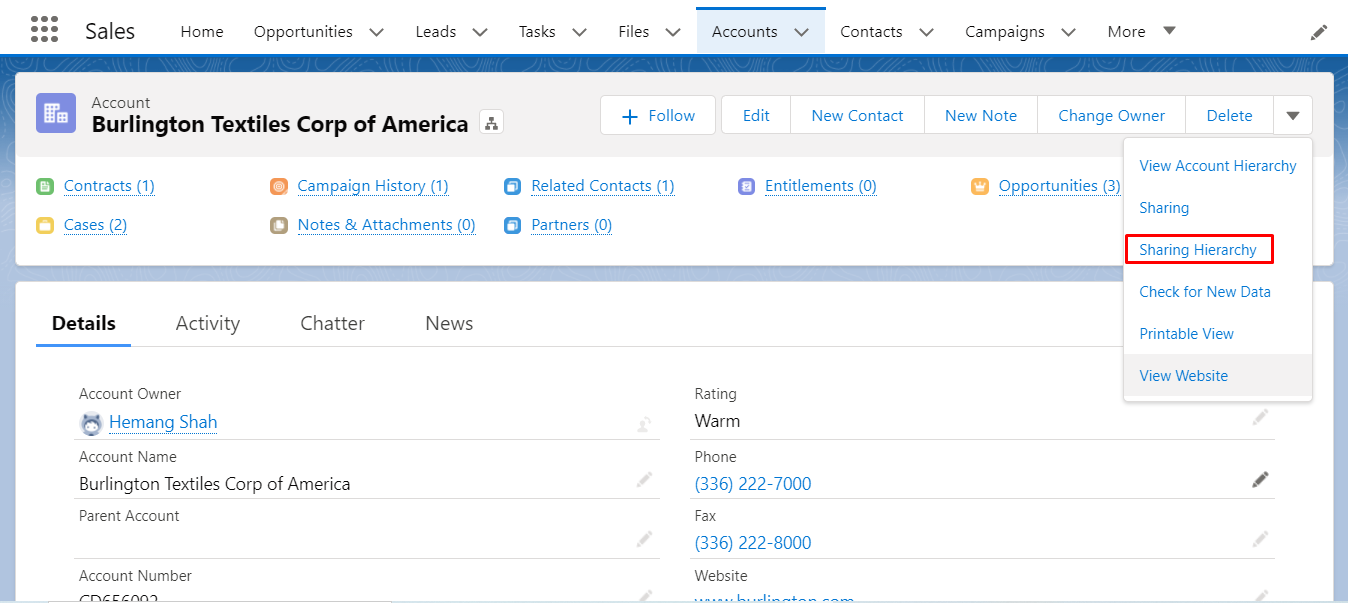 salesforce-record-access-reasons